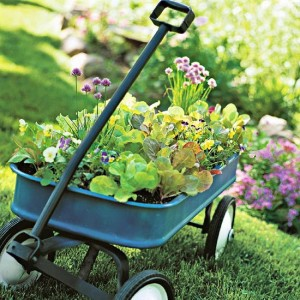 Tools To Use For Vegetable Gardening